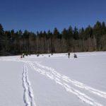 Przyjezierze - Spotkanie na lodzie 2018