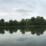 Zawody spławikowe na stawku łabędzim – 2019